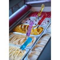 Eiscreme Spachtel mit Tritan Griff (1)